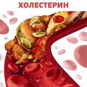 для чего нужен холестерин