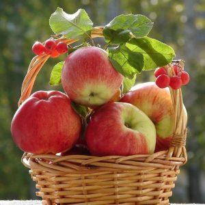 яблоки - источник углеводов