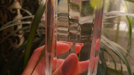 польза и вред воды для организма человека